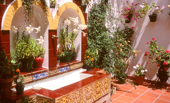 andalusian patio with potted plants