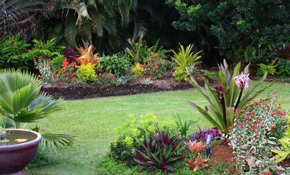 A backyard you 39 d want to spend a lot of time in trusted for Tropical garden design